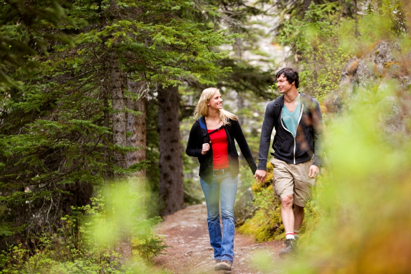 walk-forest-couple